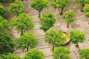 Approvato dalla regione un nuovo parco a verde di 5.000 mq a Casoria